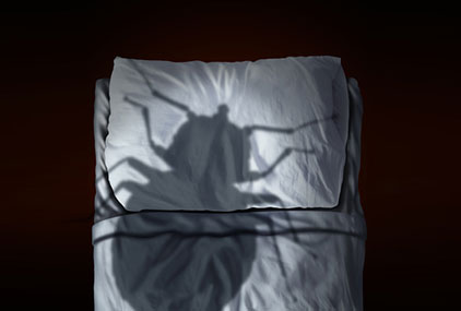 Bedbugs Giving you Sleepless Nights? Here's How to get Rid of Them