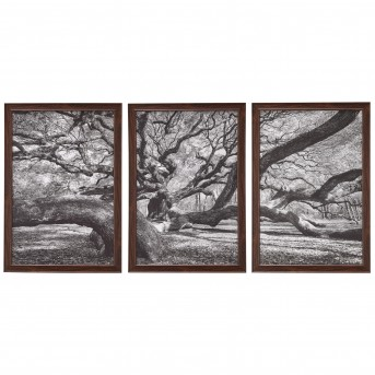 Coaster Florence Black And White Nature Scene Wall Art Available Online in Dallas Fort Worth Texas