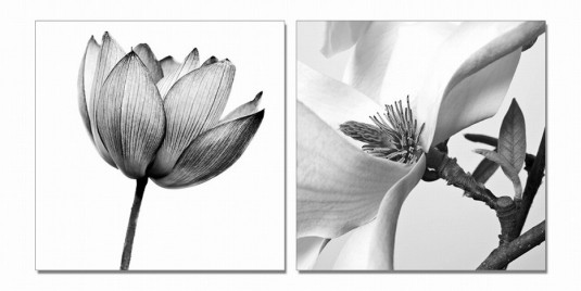 VIG Shan White Composition 2-Panel Photo On Canvas Available Online in Dallas Fort Worth Texas