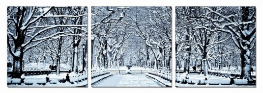 VIG Winter Trees 3-Panel Photo On Canvas Available Online in Dallas Fort Worth Texas