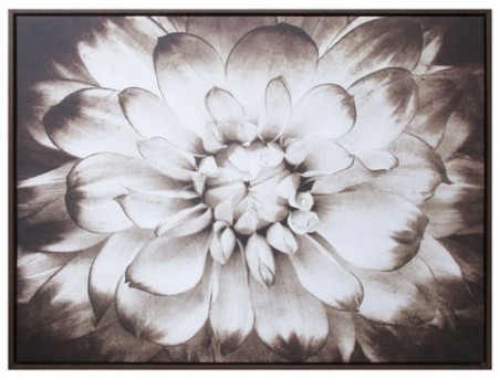Ashley Phiala Brown Wall Art Available Online in Dallas Fort Worth Texas
