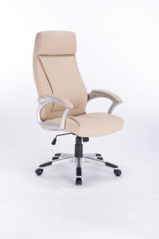 Coaster Lubo Office Chair Available Online in Dallas Fort Worth Texas
