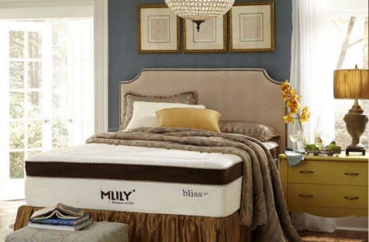Bliss Gel Twin Mattress Available Online in Dallas Texas