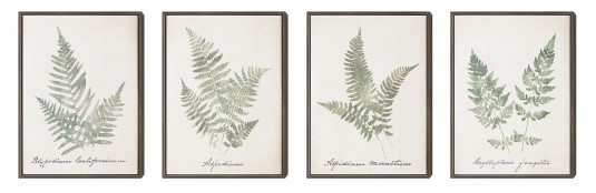 Coaster Leafy Prints Wall Art Available Online in Dallas Fort Worth Texas