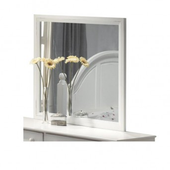 Kayla Mirror Available Online in Dallas Fort Worth Texas
