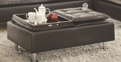 Coaster Erickson Storage Ottoman Available Online in Dallas Fort Worth Texas