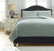 Ashley Bazek Sage Green Queen Coverlet Set Available Online in Dallas Fort Worth Texas