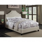 Coaster Cantillo Queen Upholstered Platform Bed Available Online in Dallas Fort Worth Texas