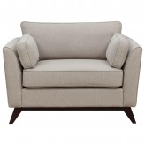Amsterdam Neutral Chair And A Half Available Online in Dallas Fort Worth Texas
