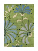 Znz Light Green 5x8 Rug Hr-rec-5-8_ac26012 Available Online in Dallas Fort Worth Texas
