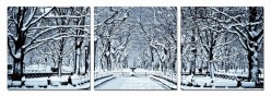 VIG Winter Trees 3-Panel Photo ... Available Online in Dallas Fort Worth Texas