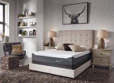 Ashley Inch Chime Queen Mattress Available Online in Dallas Fort Worth Texas