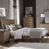 Liatris King Platform Bed Available Online in Dallas Fort Worth Texas