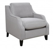 Coaster Isabelle Grey Chair Available Online in Dallas Fort Worth Texas
