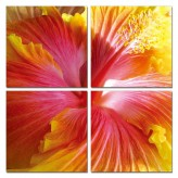 VIG Hibiscus 4-Panel Photo On C... Available Online in Dallas Fort Worth Texas