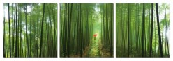 VIG Forest 3-Panel Photo On Can... Available Online in Dallas Fort Worth Texas