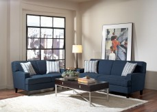Finley 2pc Blue Sofa & Loveseat Set Available Online in Dallas Fort Worth Texas