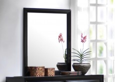 Coaster Briana Mirror Available Online in Dallas Fort Worth Texas