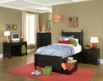 Morelle Black Twin 5pc Storage Bedroom Group Available Online in Dallas Fort Worth Texas