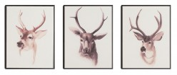 Vegan Trophy Wall Art Available Online in Dallas Fort Worth Texas