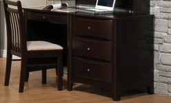 Coaster Phoenix Desk Available Online in Dallas Fort Worth Texas