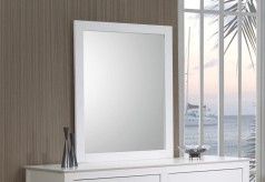 Selena Mirror Available Online in Dallas Fort Worth Texas
