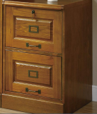 Coaster Palmetto 2 Drawer File Cabinet Available Online in Dallas Fort Worth Texas