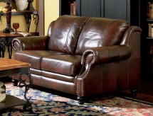 Coaster Princeton Leather Loveseat Available Online in Dallas Fort Worth Texas