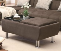 Ellwood Storage Ottoman Available Online in Dallas Fort Worth Texas