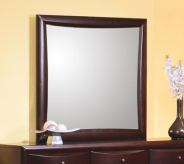 Phoenix Mirror Available Online in Dallas Fort Worth Texas